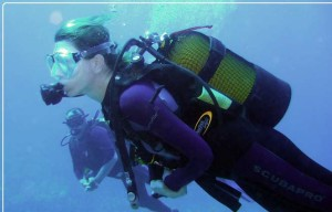 Diving prices and booking